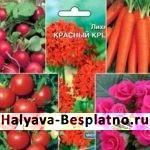 Бесплатные семена овощей и цветов