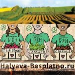 Бесплатные семена Generation Fresh