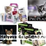 Бесплатный корм для котят и щенков PURINA PRO PLAN