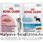 Бесплатный корм ROYAL CANIN