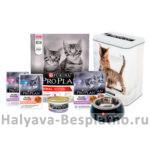 Тестирование корма Purina Pro Plan для котят